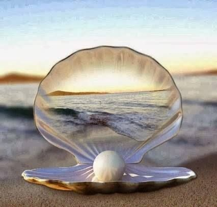 Art photo / Clam shell/ Underwater/ Pearl/ Favorite stone ...