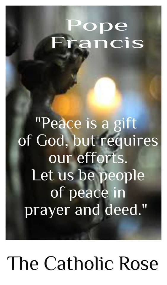 quotes and pope francis on pinterest
