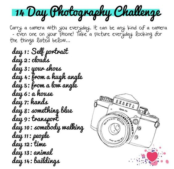 i heart art history | heart teaching art: lesson idea: 14 Day Photography Challenge