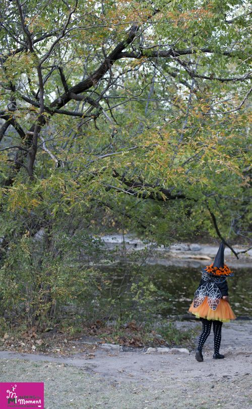 Halloween Witch Fairy at the Park Children's and Family Photography Wichita, Kansas