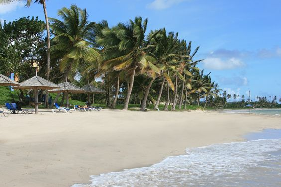 Coconut Bay Beach Resort and Spa in St. Lucia: Beach Resorts, Bay Resort, Bay Beach