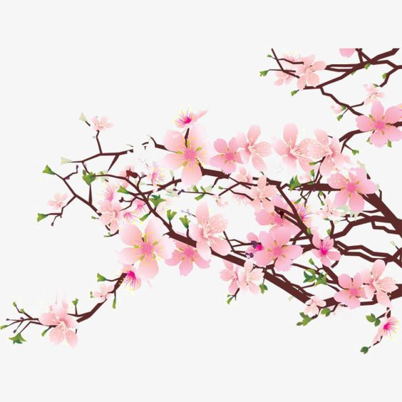 Pink Flowers Watercolor Flowers Chinese Style Ink Flowers Png Transparent Clipart Image And Psd File For Free Download Cherry Blossom Art Cherry Blossom Wall Art Cherry Blossom Clip Art