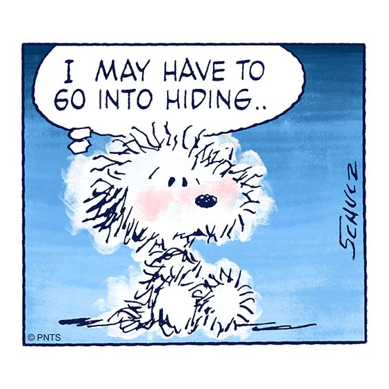 "PEANUTS on Twitter: ""#tfw you are having a bad hair day.… """