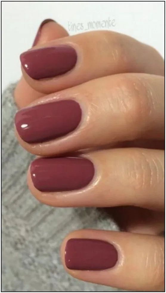 58 Most Gorgeous And Cute Light Nails Ideas For Winter And Spring Life Page 30 Of 60 Diaror Di In 2020 Fall Gel Nails Sns Nails Colors Gel Nail Colors