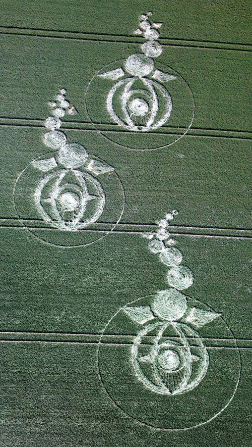 Círculos en los cultivos 0ade6d35a37564a4028facb51bbe4c35