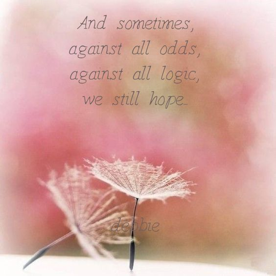 And sometimes,  against all odds,  against all logic,  we still hope...
