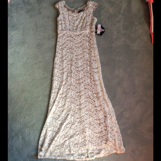 NWT Cream & Ivory Floral Lace Dress NWT Cream & Ivory Floral Lace Dress by R&M Richards, Size 4P, Made in the USA R&M Richards Dresses Maxi