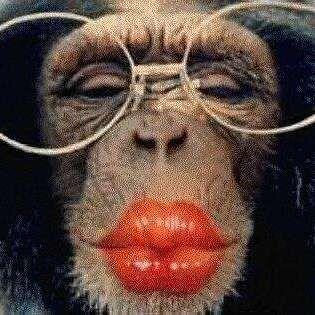 """Elle ressemble aux chimpanzés dans """"The Lazy Song"""""""