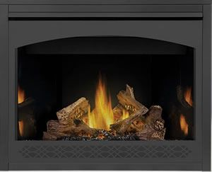 Napoleon Ascent 42 Napoleon B42 Gas Fireplace Gas Fireplace