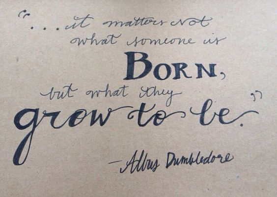 Harry Potter Birthday card Dumbledore quote it matters not what