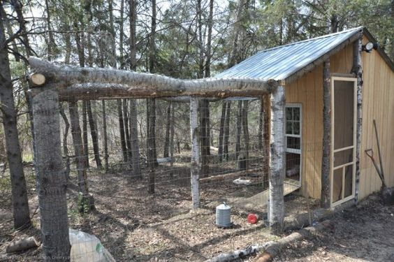 Rustic chicken coop and run.: