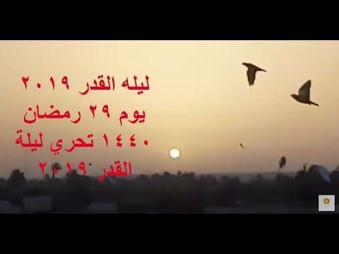 ليله القدر 2019 يوم 29 رمضان 1440 تحري ليلة القدر 2019 Arabic Calligraphy Calligraphy