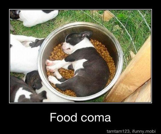 Food Coma :)