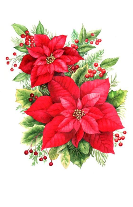 Poinsettias clip art big 700x1087 Christmas:
