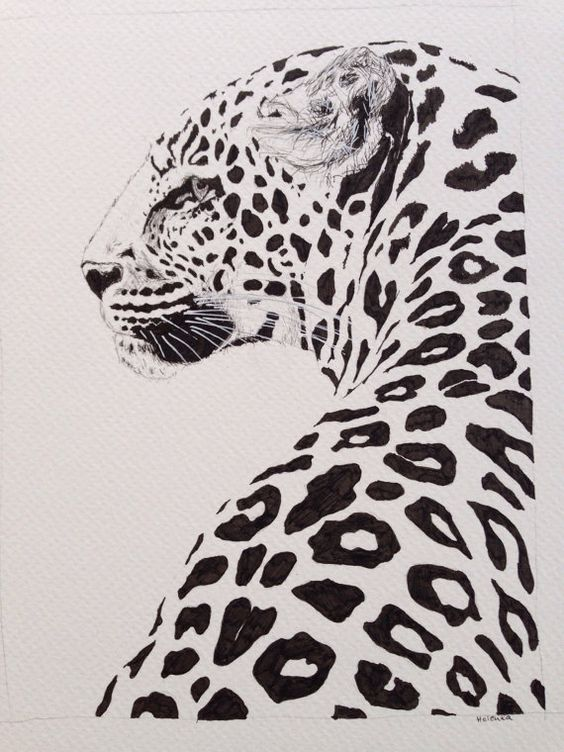 Leopard ink drawing beautiful and majestic animal print for Ink drawings easy
