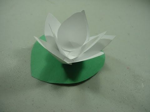 How to make a paper lotus flower