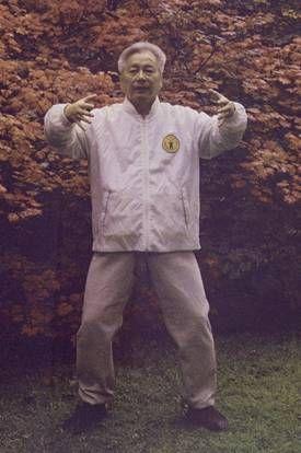 Zhan Zhuang master