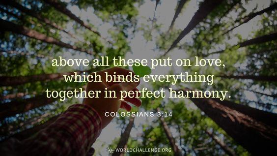 Colossians 3:12-14 | World Challenge