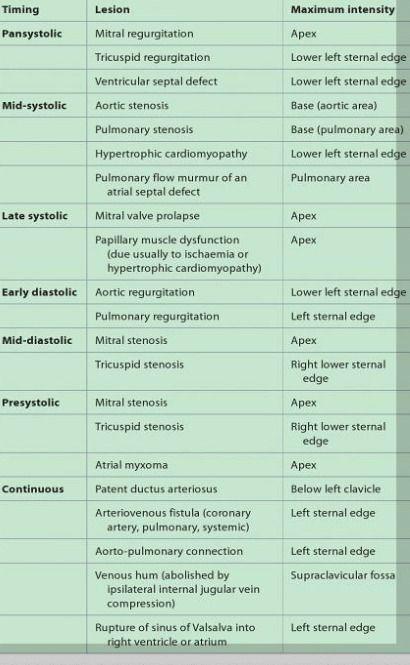 cardiac murmur summary: