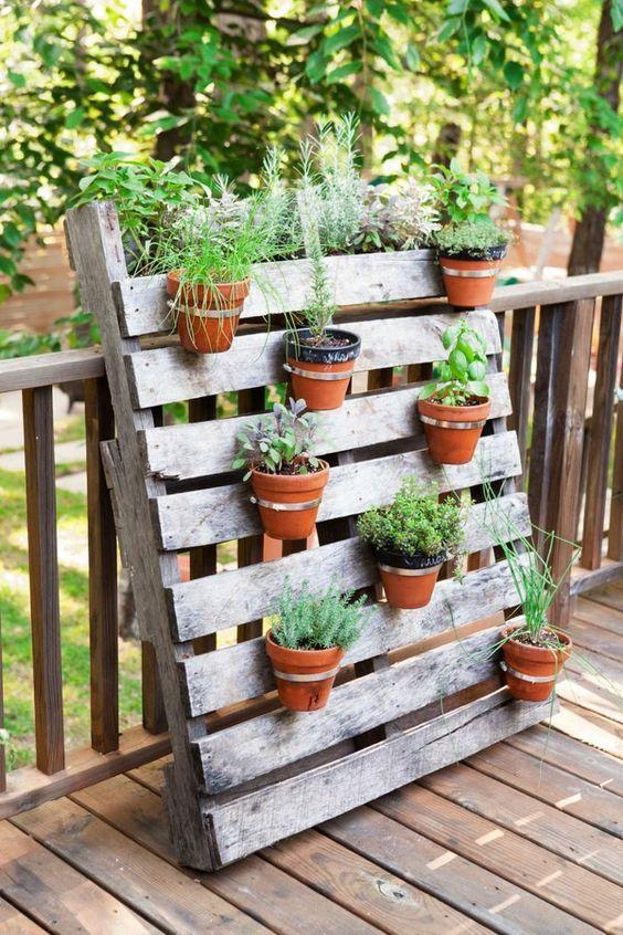 topfpflanzen garten pflanzen palette diy ideen