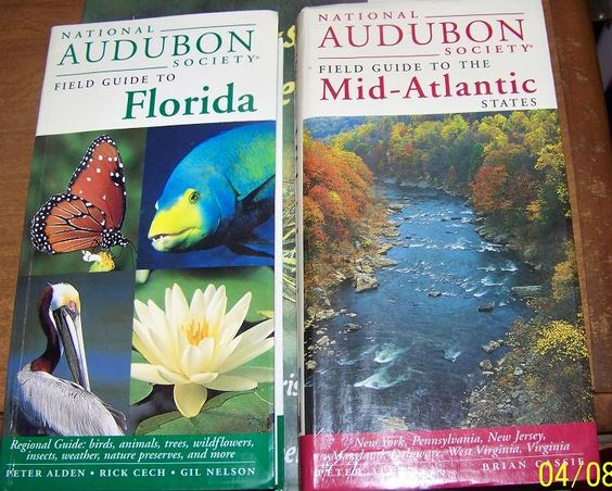 National Audubon Society's Education and Conservation Efforts