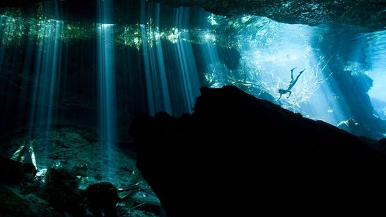 Bing Image Archive: Diver in a cenote near Akumal, Mexico (© Paul Nicklen/Getty Images)(Bing United States)