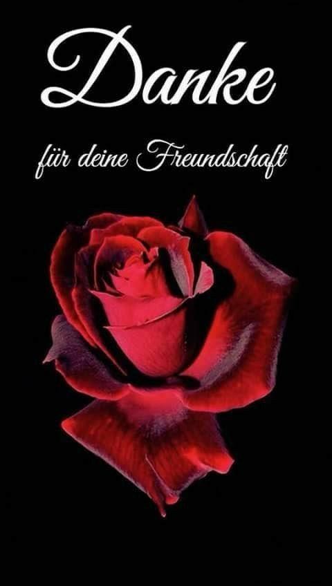 Pin Von Suzana Preinsperger Auf Diverses Freundschaft Zitate Danke Freundschaft Bilder Freundschaft