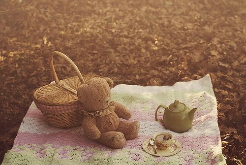 autumn tea party / Aimee Ketsdever