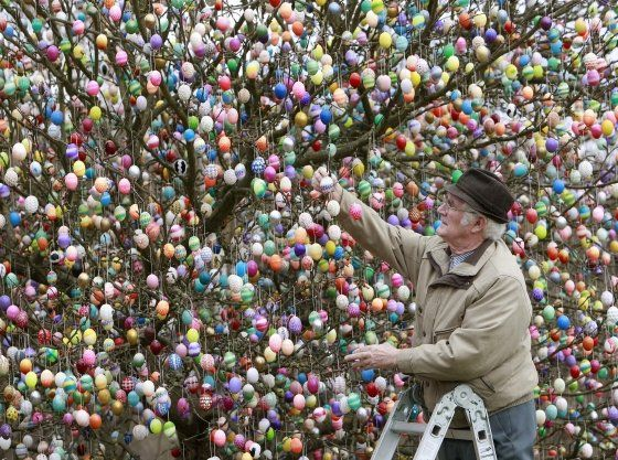 Colourful Easter eggs hanging on a tree