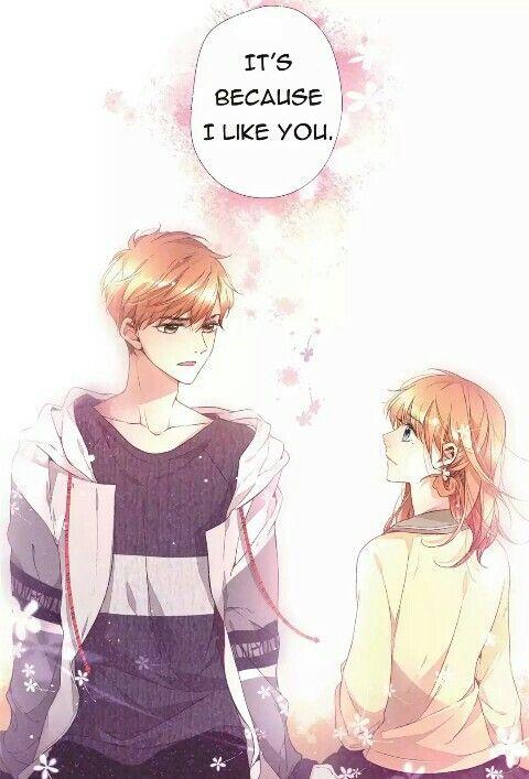 Love Like Cherry Blossoms Confession Anime Cherry Blossom Anime