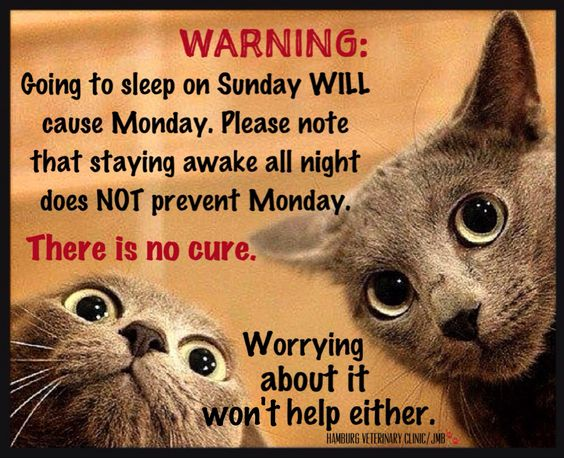 WARNING: Going to sleep on Sunday WILL cause Monday.  Please note that staying awake all night does NOT prevent Monday.  There is no cure.  Worrying about it won't help either.