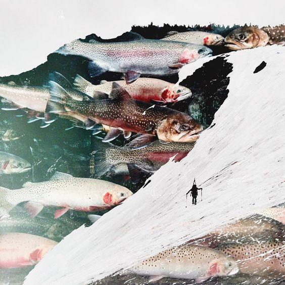 glacier | st.marys.co