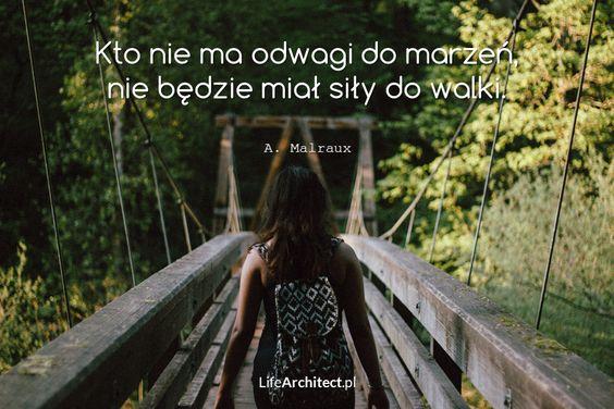 Kto nie ma odwagi do marzeń, nie będzie miał siły do walki. A. Malraux