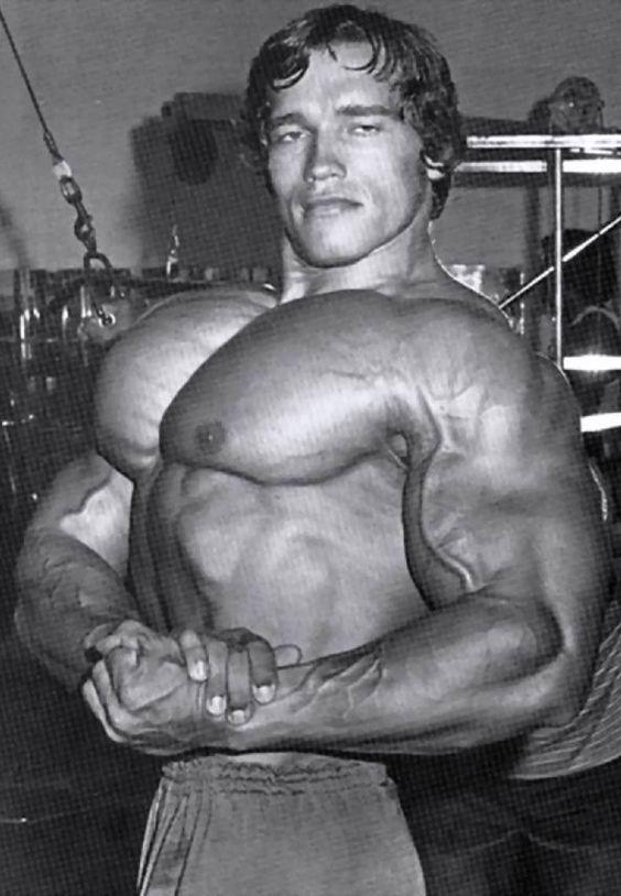 arnold schwarzenegger austria 30 july 1947 usa height 6 foot 2 188 cm golden age of bodybuilding pinterest arnold schwarzenegger