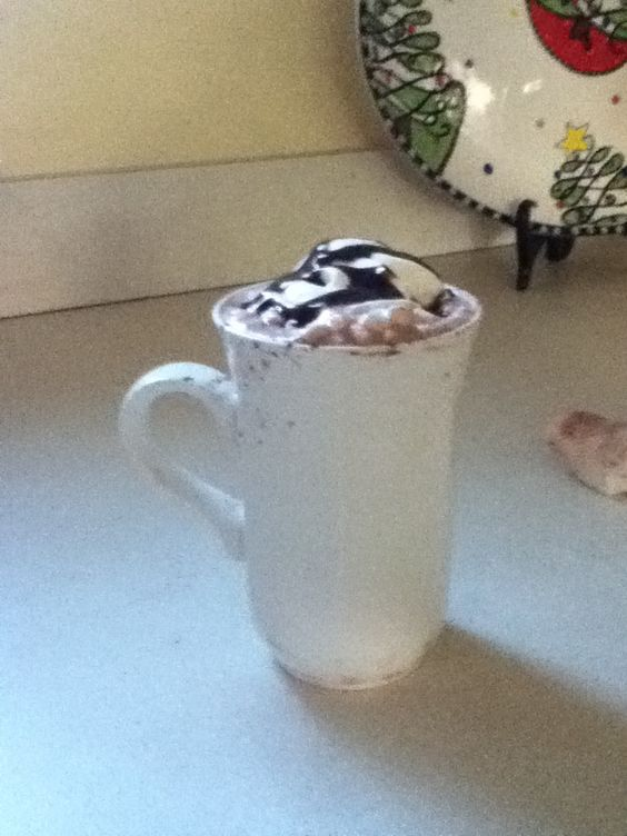 Yummm- Hot Chocolate, whipped cream and chocolate syrup on top