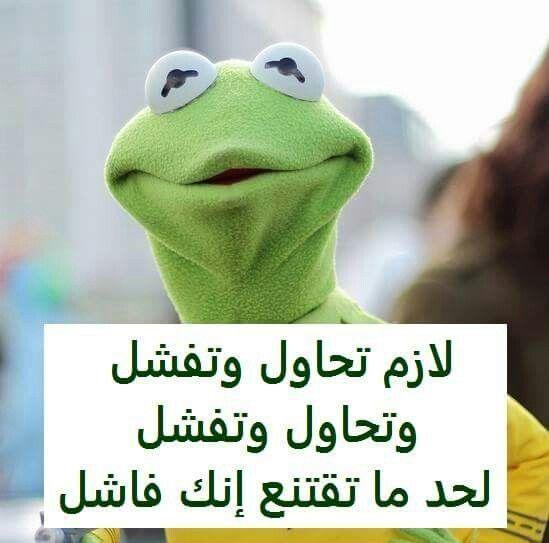صور مضحكة و طريفة و أجمل خلفيات مضحكة Hd بفبوف Funny Qoutes Funny Reaction Pictures Arabic Funny