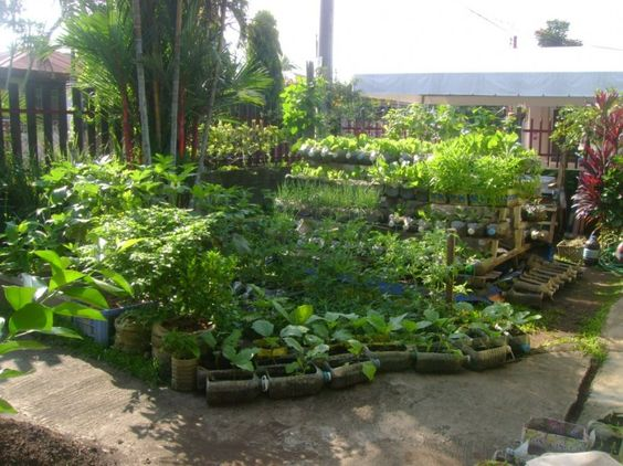 Awesome Ideas Of Modern Garden Design With Recycled Bottles