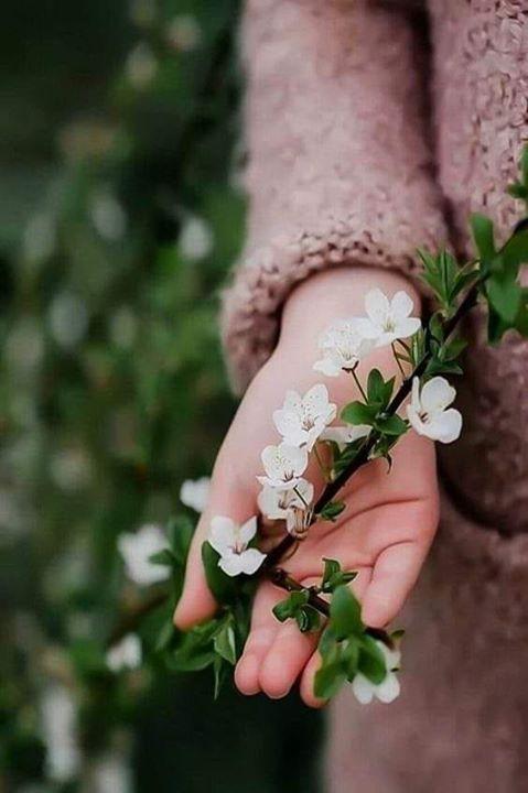 باسمك ربي حصنت نفسي و أهلي ومن أحب من أن يصيبنا أذى اللهم إني أستودعتك أثمن أشيائي و أغلاها فأحفظها بح Flowers Photography Hand Photography Spring Photography