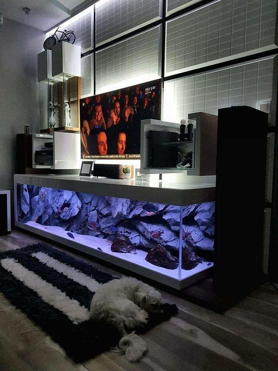 Tv Stand Aquarium Home Aquarium Aquarium Diy Fish Tank