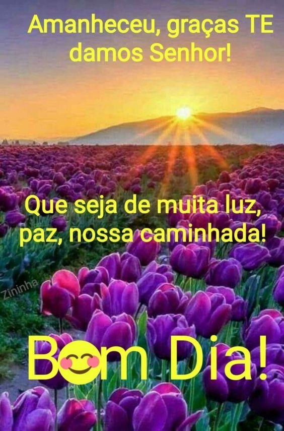 Bom dia que Seja com muita luz e paz na sua vida Nova mensagem de bom dia!