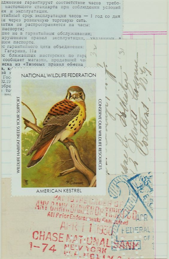 Vintage Kestrel Collage created with pieces from my collection of ephemera