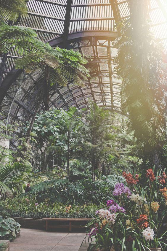 Gardens Botanical Gardens And San Diego On Pinterest