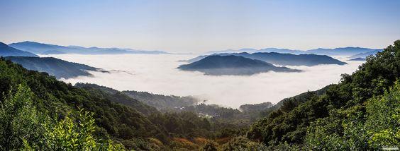 Taegisanis a mountain in the counties ofHoengseongandPyeongchang,Gangwon-do.