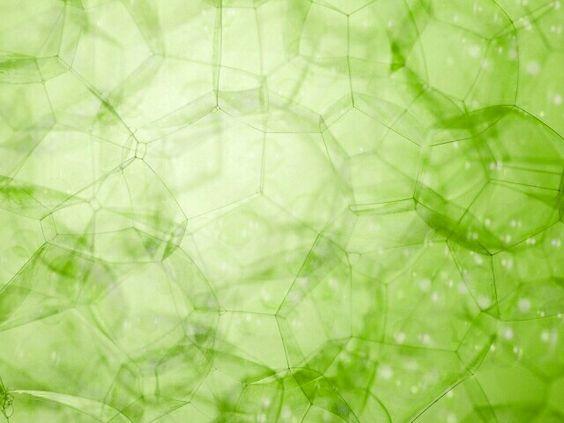 Grün green color