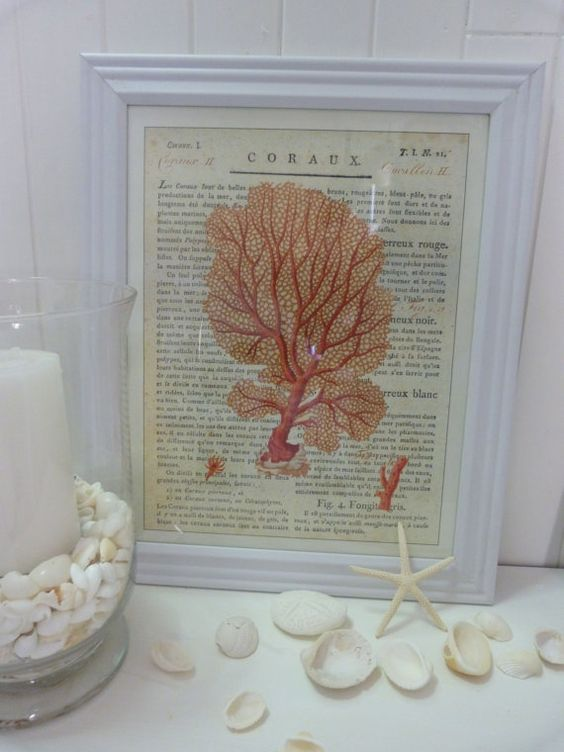 Cavallini coral prints white frame coastal antique french for French beach decor