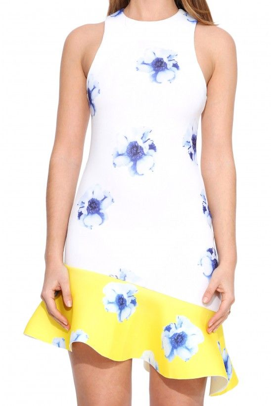 Six Crisp Days Neoprene Floral Dress in Multi | Necessary Clothing
