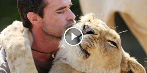 Vidéo : Quand des animaux sauvages enlacent et embrassent des humains