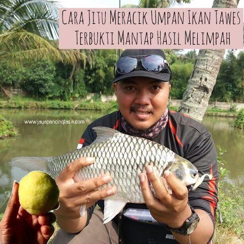 Cara Jitu Meracik Umpan Ikan Tawes Dengan Tambahan Essen Dari Aquatic Essen Dan Tentunya Sudah Terbukti Ampuh Mendapatkan Hasil Panci Essen Ikan Ikan Air Tawar
