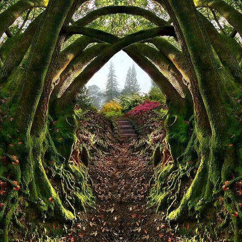 Secret Garden, Portland, Oregon - part of Leach Botanical Garden - can't believe…
