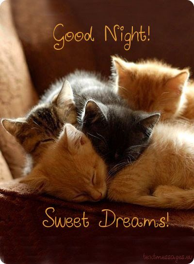 Good Night Card For Friends Good Night Messages Good Night
